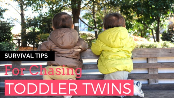 Survival Tips for Chasing Toddler Twins