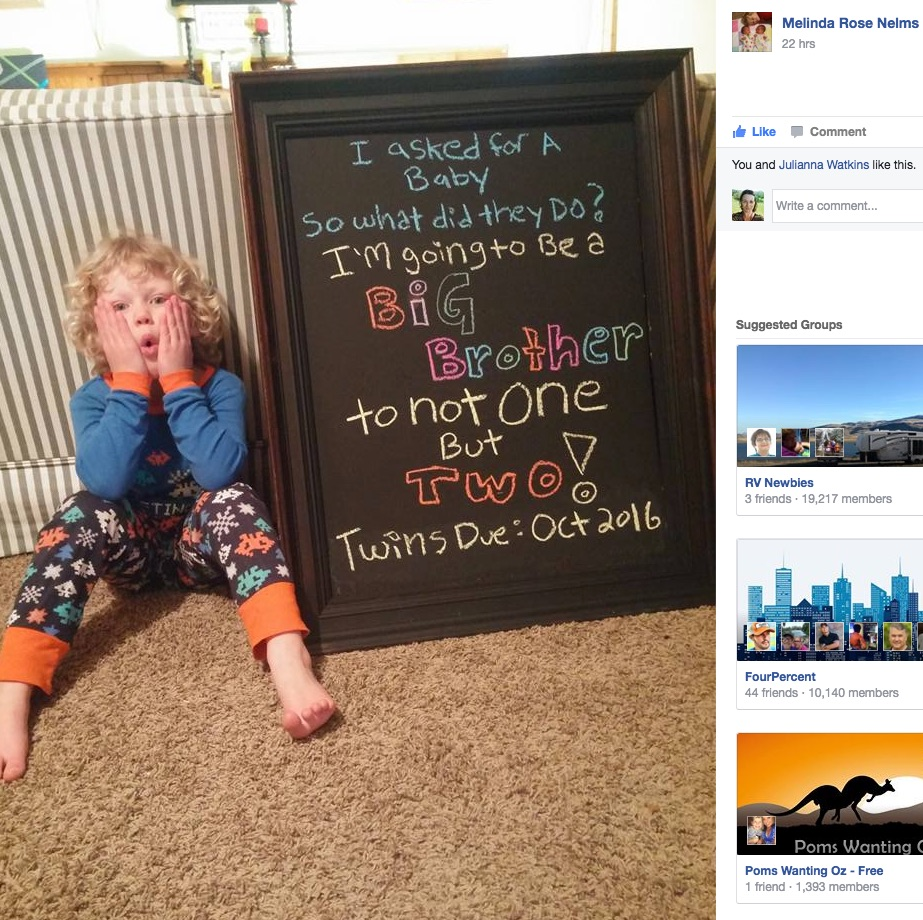 sibling twin pregnancy announcement